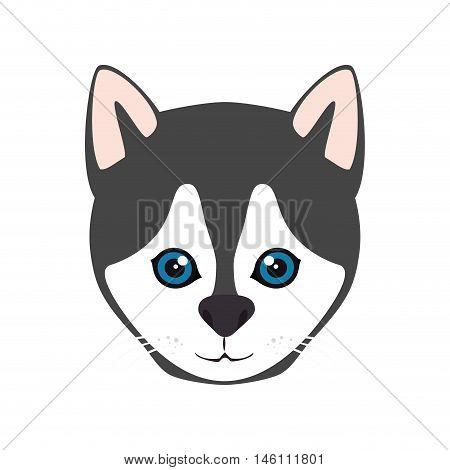 siberian husky breed dog canine pet animal. puppy cartoon. vector illustration