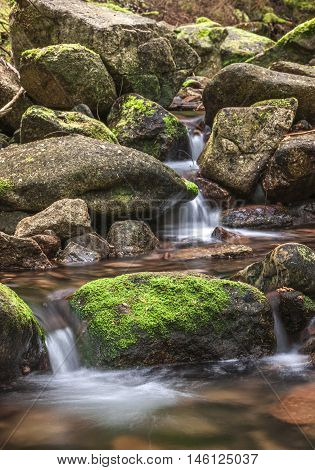 Meandering mountain stream with mossy rocks called Beauty Creek at the east end of Coeur d'Alene Lake in Idaho.