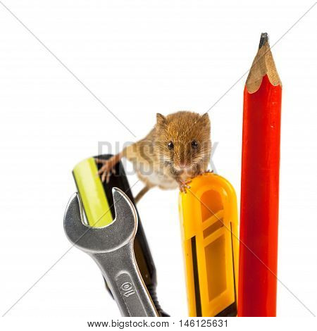 Mouse On Tools