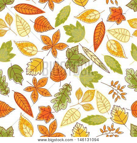 Autumn leaves background with sketchy seamless pattern of orange, yellow and green foliage of maple, oak, chestnut, birch and elm trees, bushes and herbs. Autumnal nature theme design