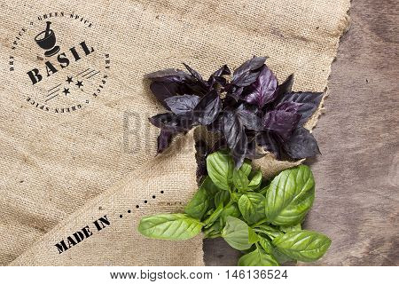 Industrial prints stamp on the fabric: Made in ... and spices - basil. Two beam basil green and purple.