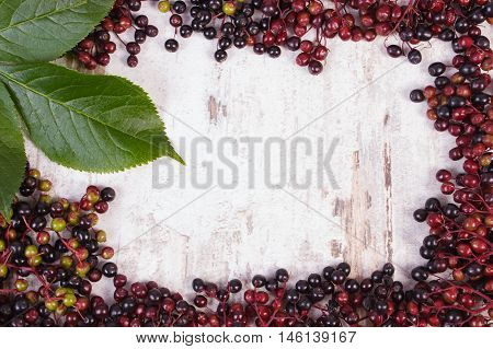 Frame of autumn fresh elderberry with green leaf and copy space for text on old rustic wooden background healthy nutrition alternative medicine and therapy