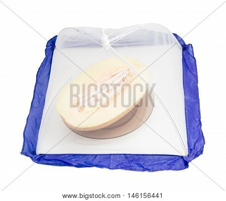 Part of melon under of a small special tent made of mosquito nets to protect the products against insects on a light background
