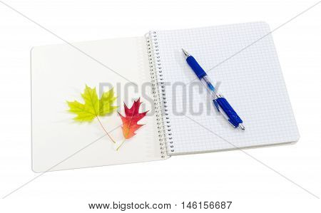 Open on the first page school exercise book with spiral binding and sheets of squared paper blue pen and two yellow and red leaves on a light background