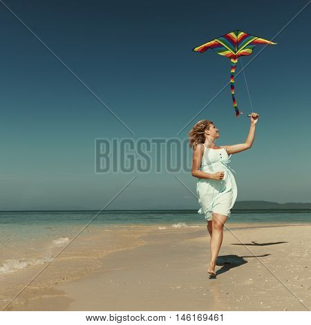 Beach Kite Flying Getaway Holiday Concept
