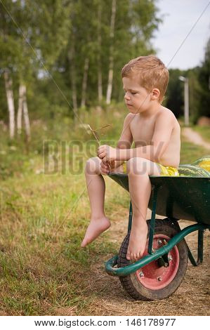 Cute little kid boy sitting on a garden wheelbarrow on a summer day. Outdoors activities in countryside. Child resting after helping working in the garden. Little helper after hard work.
