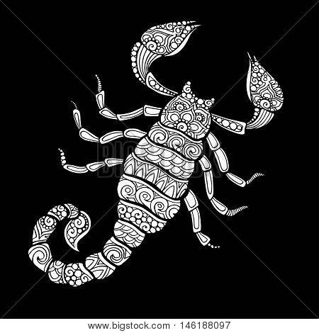 Vector hand drawn doodle scorpion illustration. decorative scorpion drawing