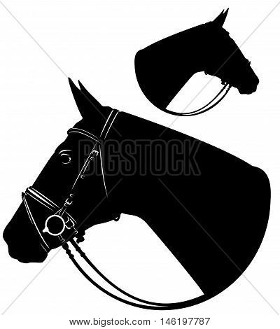 horse head with harness profile portrait - black and white vector design