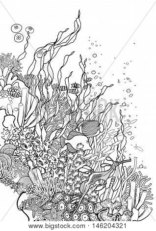 Graphic coral reef drawn in line art style. Ocean plants and rocks isolated on white background. Vector art in black and white colors. Coloring book page design for adults and kids.