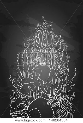 Graphic coral reef drawn in line art style. Ocean plants and rocks isolated on chalkboard. Vector art in black and white colors