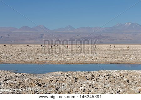 Atacama Salar, Chile / Salt lake and mountains at Atacama Salar, Chile