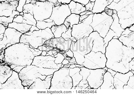 Invert Marble Texture Blackline And White Background For Design Or Decorate Your Content.