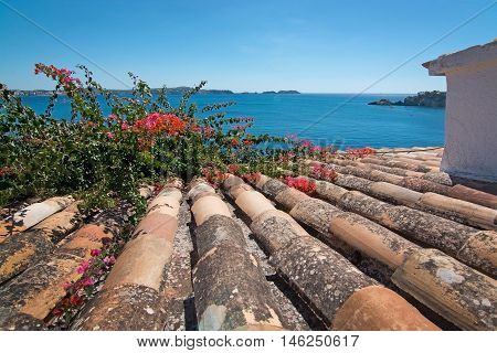 Charming Shabby Mallorca Roof Tiles