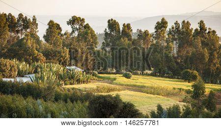 Farmland and mountains in Ethiopia