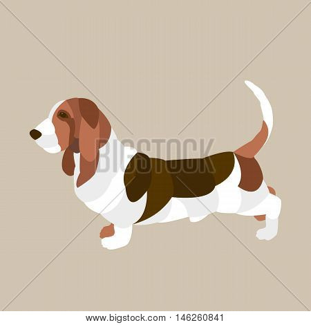 basset hound Flat style vector illustration side view