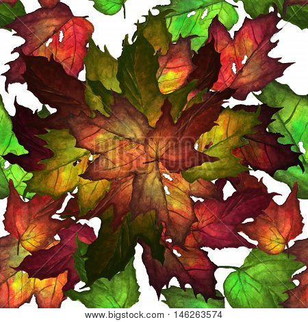 Watercolor illustration of colored autumn leaves. Seamless patern. Hand made painting.