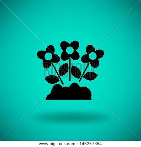 Flat icon. Daisies.