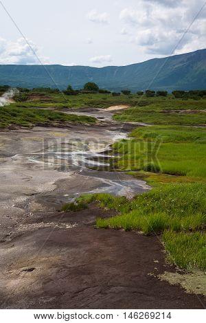 Vegetation and sandy pools of Uzon Caldera, Kamchatka, Russia