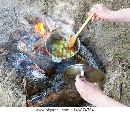 cooking on campfire at picnic, food prepared in pot on wood, potatoes and tomatoes, healthy vegetarian food, woman hands with spoon