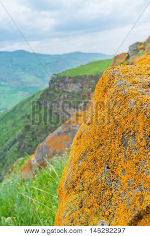 The rocks on the are covered with yellow lichen looking unusual among the dark green grass Saro Georgia.