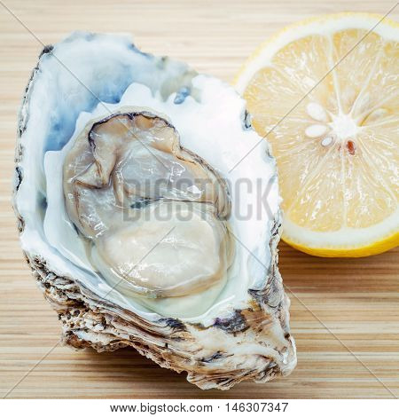 Fresh Oysters With Lemon On  Wooden Background. Opened Oysters With Selective Focus On Wooden Textur