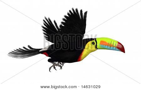 Keel Biled Toucan Flying On White