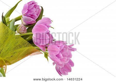 Violet Tulip Bouquet