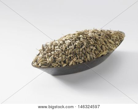 cumin in a oval shape container on the white background