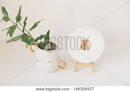 Green Branches With Leaves In Cup And Cd, Dvd On Wooden Easel. Styled Natural Eco Home Office. Produ