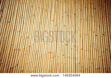 Bamboo in Thailand Golden bamboo, wood background
