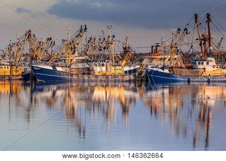 Dutch Fishery In Lauwersoog Harbor
