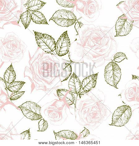 Vector seamless patern of roses. Hand drawn engraved vintage illustration. Good for wrapping papper shop textile greeting card design fashion celebration. Floral background.