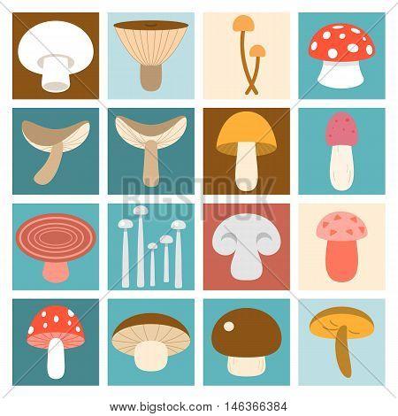 Mushroom illustration flat design, Mushroom icon vector