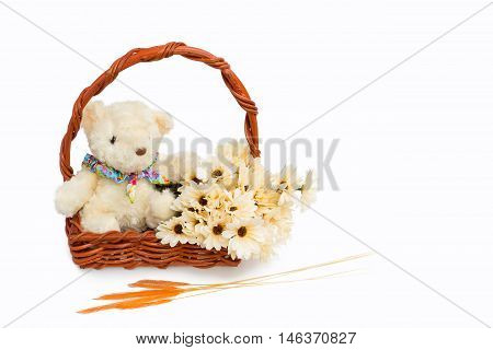Gift basket made of rattan and put the teddy bear and blooming flowers on white background and Grass flower placed on floor