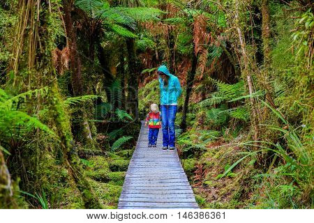 Mother with little daughter walking in the rain forest. Haast West Coast New Zealand