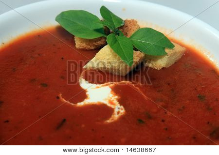 Yummy tomato soup with fresh cream