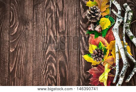 Autumn leaves pinecone top view branch still life on old wooden board rustic style