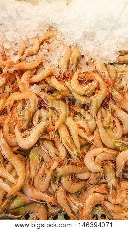 Fresh shrimps with ice in the bazaar