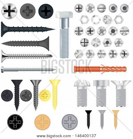 Screws bolts. Set. Vector illustration isolated on white background