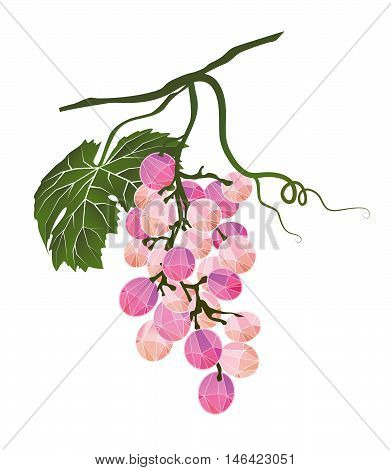 Mellow bunch of pink grapes stylized polygonal