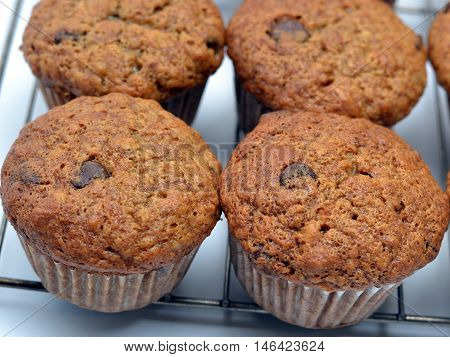 Close-up of Banana Chocolate Chip Muffins; cooling on wire rack