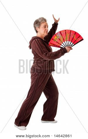 Senior Woman Doing Tai Chi Yoga Exercise