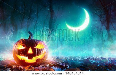 Fiery Pumpkin In A Haunted Forest In The Moonlight