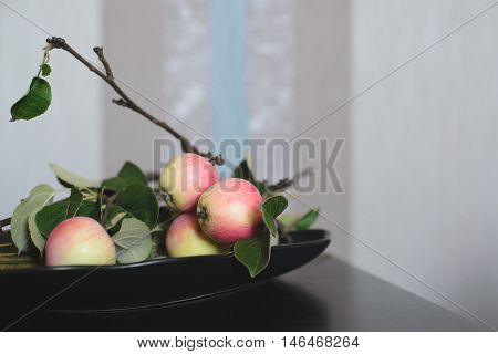 side view apple tree branch in plate on the black table