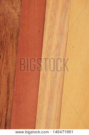 Veneer samples of blackwood myrtle tasmanian oak crown cut and sassafras.