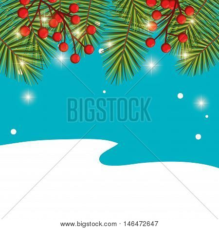 christmas season floral decoration with green pine leaves and red holy fruit. blue and white background. vector illustration