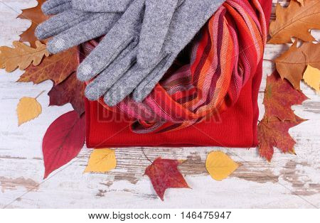 Womanly clothes and autumnal leaves gloves shawl sweater warm clothing for autumn or winter old rustic wooden background