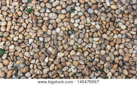 Close-up wall pattern of gravel stone texture, Outdoorwall pattern of gravel stone.