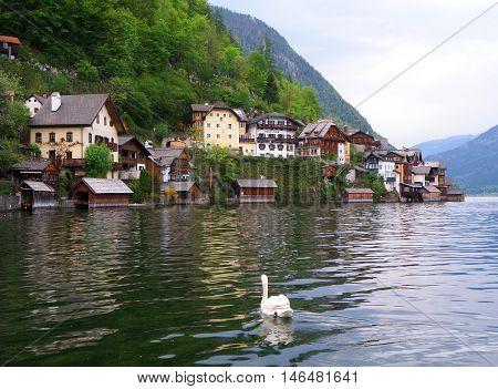 A nice view from Hallstatt Lake, Austria