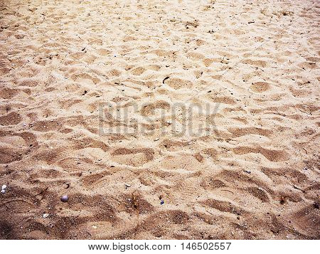 A clue on the surface of sand.
